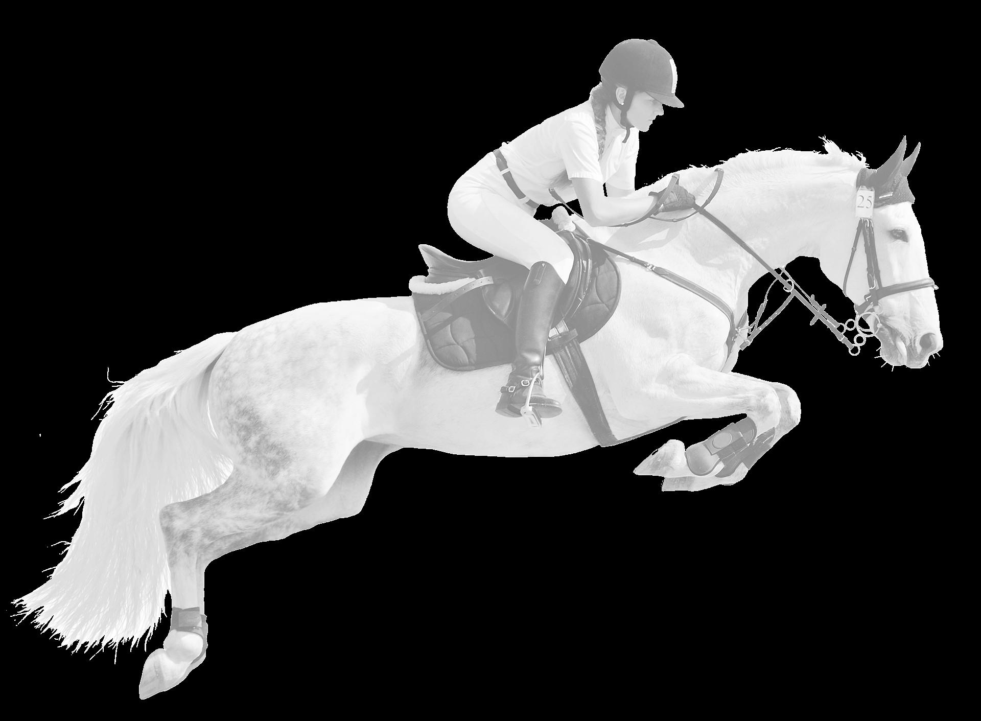 EponaMind - Technology for the Horse