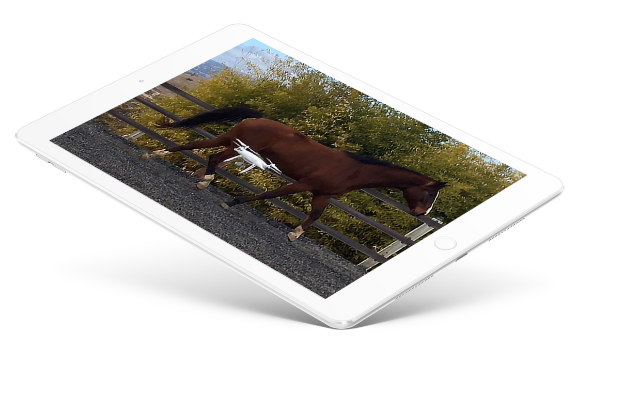 Equine Research and Education Tablet