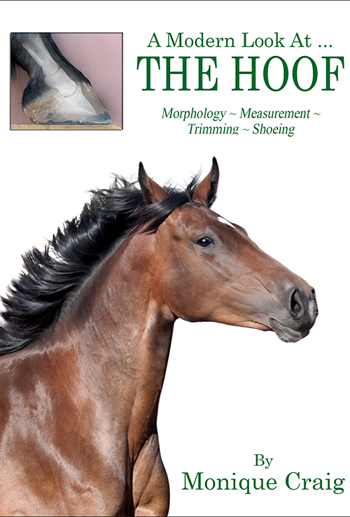 Horse Hoof Book