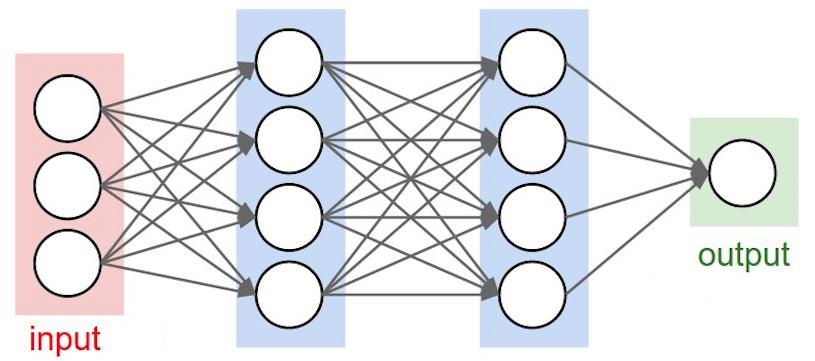 Equine Neural Networks - Veterinary Imaging