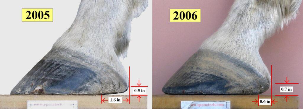 Heel under-run and Heel height